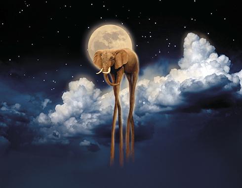 Лунный странник