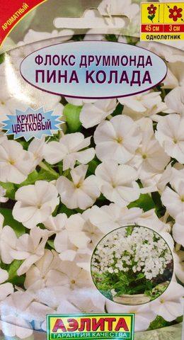 Семена Цветы Флокс друммонда  Пина Колада, Одн