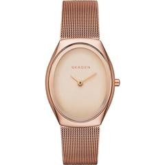 Женские часы Skagen SKW2299