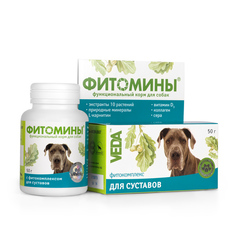 Фитомины для собак для суставов 50гр.