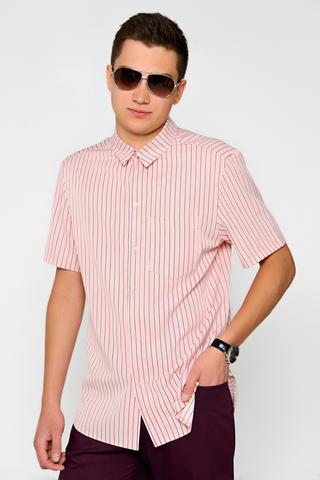 Рубашка (полоска)(deni).. Классическая рубашка прямого силуэта. Рукав короткий с манжетом. Ворот на стойке. По переду планка с пуговицами. (Длина: 48-74 см; 50-76см; 52-77см; 54-78см)