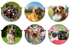Подставка керамическая (круглая) Собаки в ассортименте Yuxin