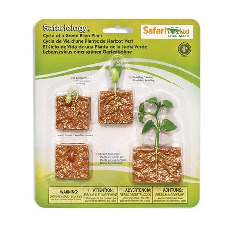 Набор фигурок Жизненный цикл зеленой фасоли, Safari Ltd.
