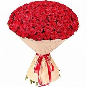 Цветы 101 красная роза 101_крас_роза.jpg