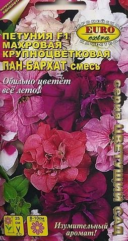 Семена Цветы Петуния Пан-бархат смесь F1
