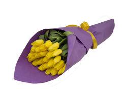 Солнечный тюльпан