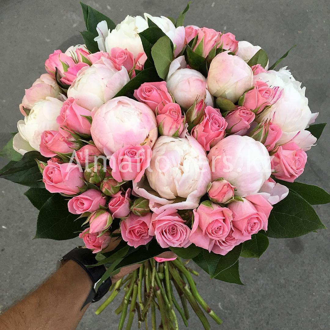 Пионовидные розы картинки 7