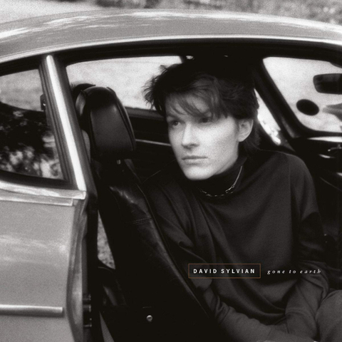 David Sylvian / Gone To Earth (2LP)