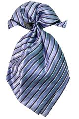 Детский галстук-пластрон для мальчика