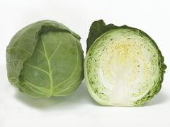 Ортус F1 семена капусты белокочанной, (Takii / Таки)