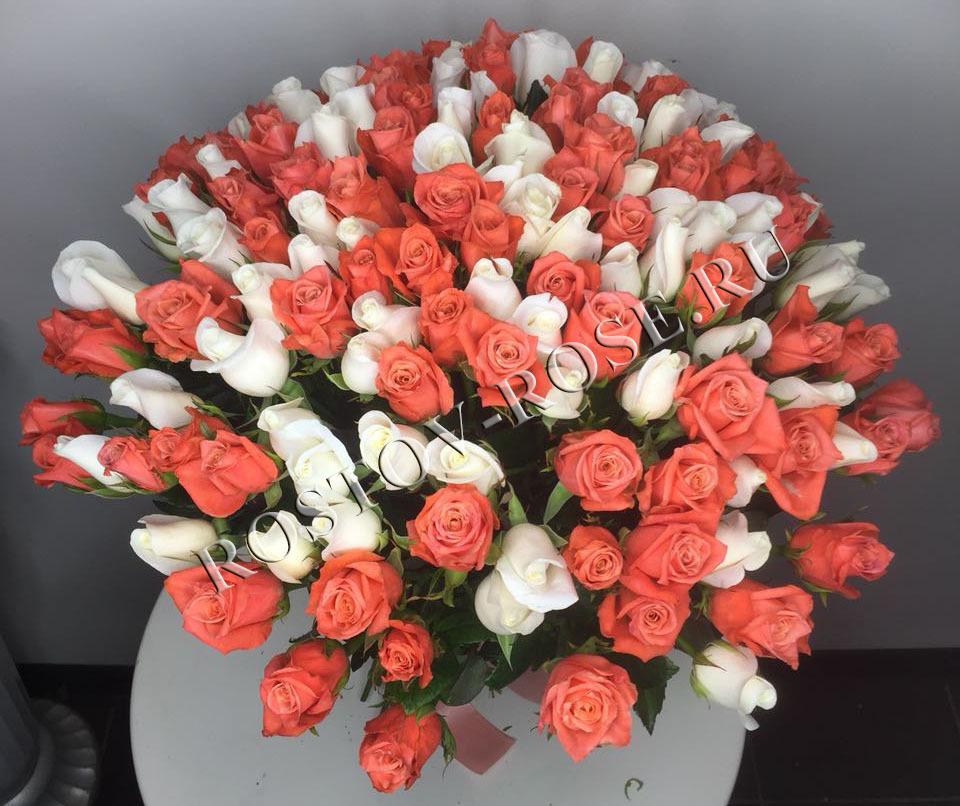 Микс из местных кораллово-белых роз 60 см