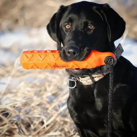Поноска для тренировки собак Hexa Bumper от Avery