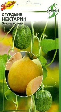Семена Огурдыня Нектарин