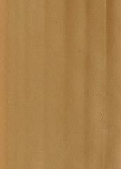 Простыня сатиновая 240x260 Elegante 6800 золотая