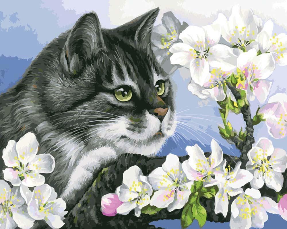 Картина раскраска по номерам 40x50 Серая кошка в цветах ...