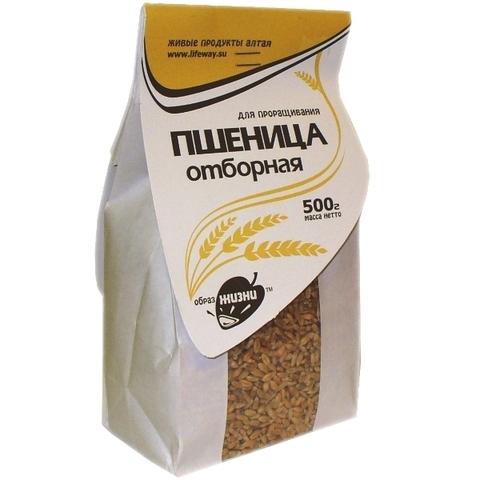 Пшеница (Образ жизни), 0,5кг