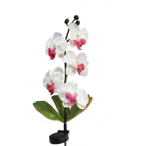 Светильник на солнечной батарее «Орхидея розовая с розовым», 5 LED белый, PL301 (Feron)
