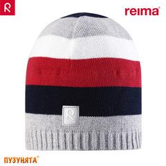Шапочка Reima Datoline 528377-3830