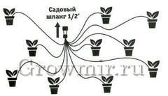 Система группового капельного полива
