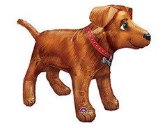Фольгированный шар Собака