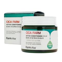 Farmstay Аctive Conditioning Balm - Крем-бальзам с центеллой азиатской