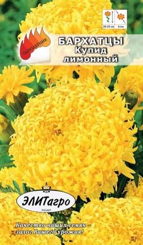 Семена Бархатцы Купид лимонный, Одн