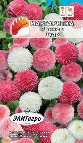 Семена Цветы Маргаритка Раннее чудо махровая