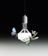 Ingo Maurer Johnny B. Butterfly