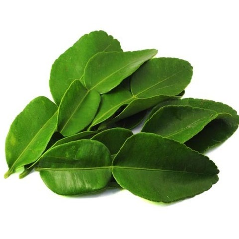 https://static-eu.insales.ru/images/products/1/2005/30549973/lime_leaves.jpg