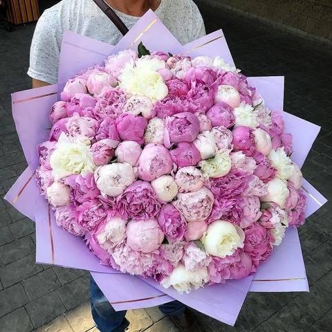 Букет из 101 пиона (Розовые и белые)