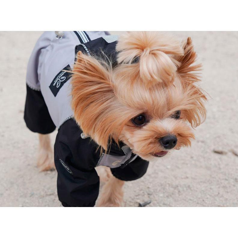 дождевики для собак мелких пород