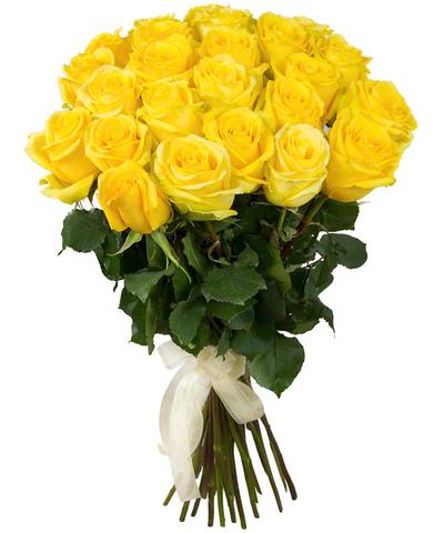 Голландские желтые розы