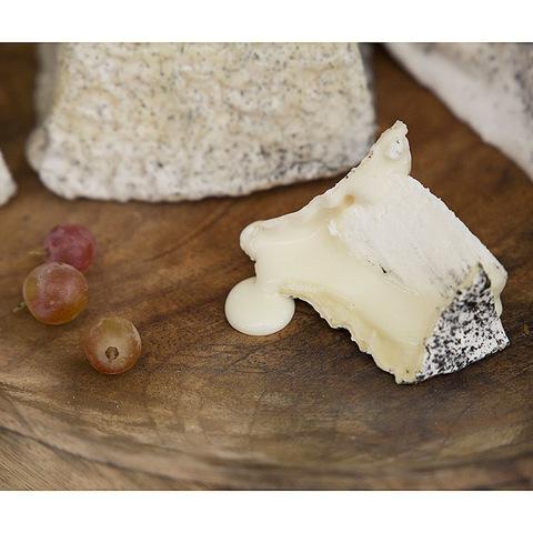 Фотография Козий сыр мягкий