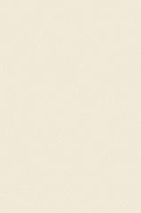 Искусственная кожа Magic (Мейджик) 06