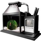 Настольный аквариум AQUAME черный + органайзер (часы, календарь, будильник, термометр, таймер) (AquaPlus)
