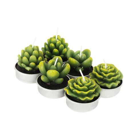 Набор свечей Succulent