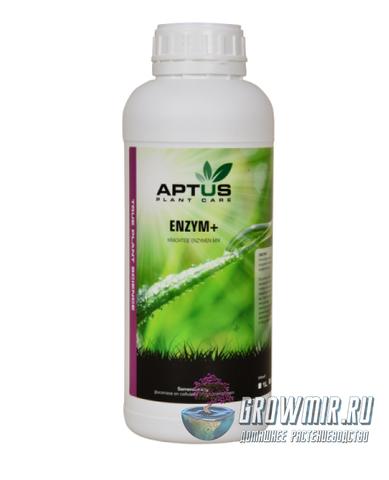 Aptus Enzyme+ 100 мл