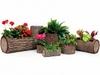 Вертикальная цветочница  Surreal Береза M (32х27 см) (Nature Innovation)