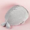 Подушка Тюлень с пледом