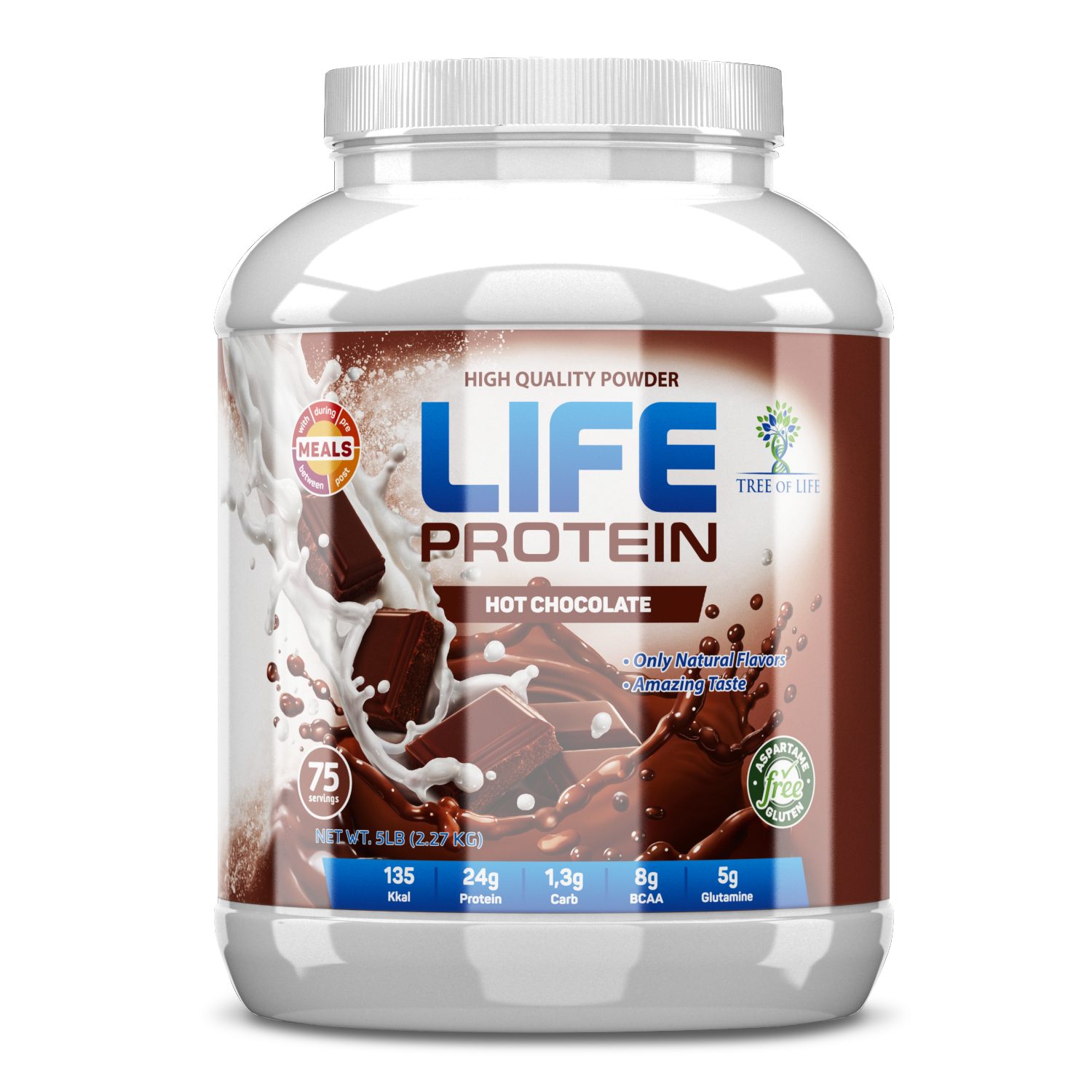 LIFE Protein Hot chocolate 5lb