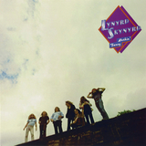 Lynyrd Skynyrd / Nuthin' Fancy (LP)