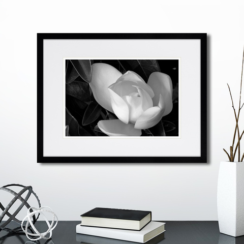 Анна Агостон - Mysterious plants №12