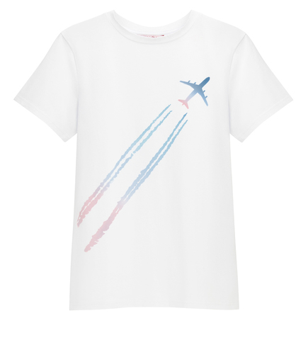Футболка Plane in the sky мужская