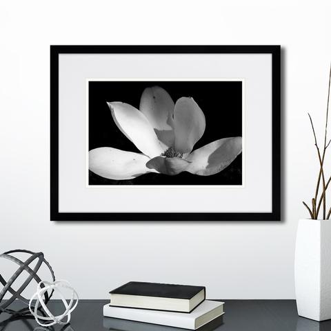 Анна Агостон - Mysterious plants №11
