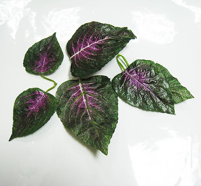 Крупные листья растений двойные, 6 шт.