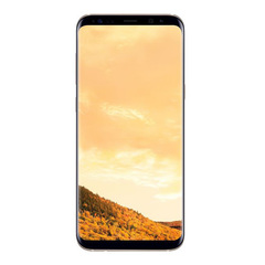 Samsung Galaxy S8 Plus Duos 64Gb Желтый топаз