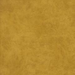 Велюр Camel golden gloud (Кемел голден глоуд) 9