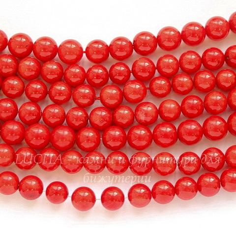 Бусина Коралл (тониров), шарик, цвет - красный, 8 мм, нить