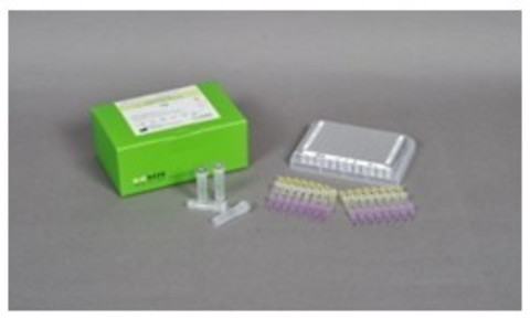 AccuPower UU Real-Time PCR Kit 96 тестов
