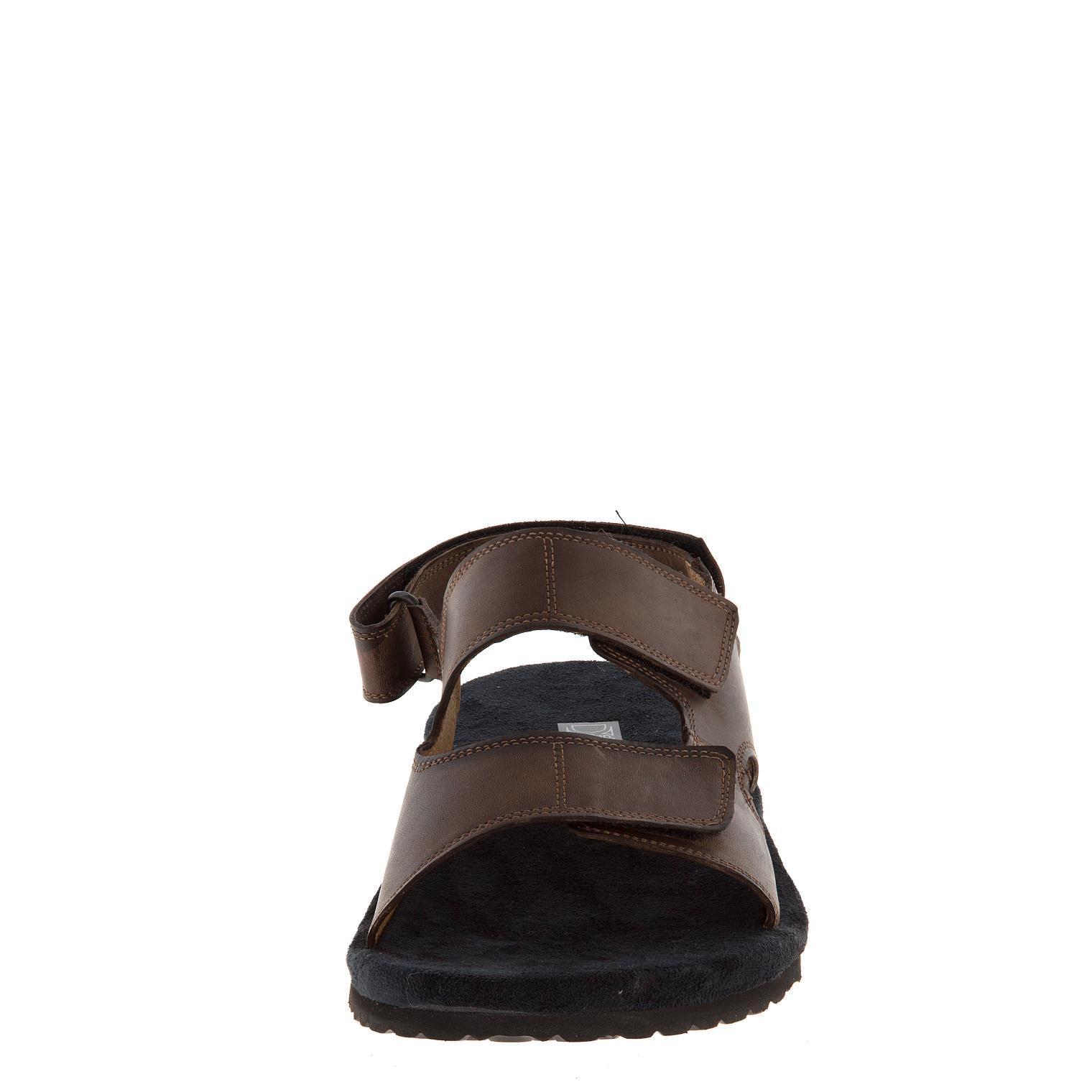 579157 сабо мужские коричневые больших размеров марки Делфино